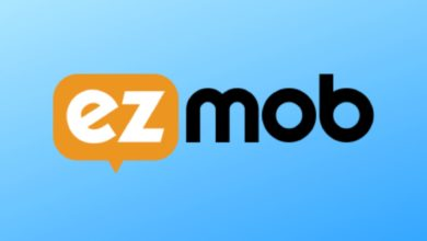 Ezmob Review For Publishers