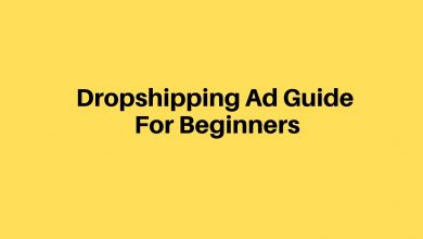 Dropshipping Ad Guide For Beginners