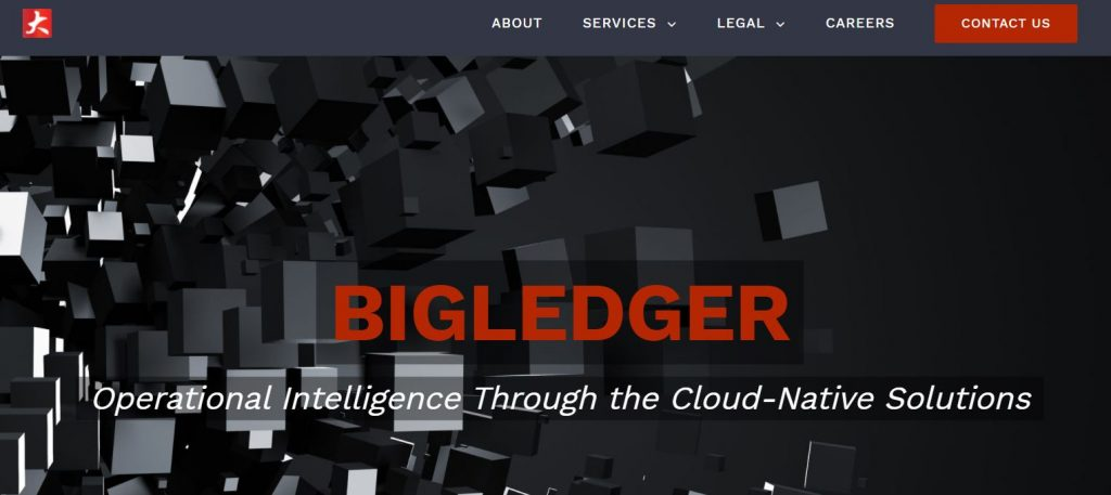 BigLedger