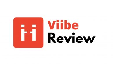 Viibe Review